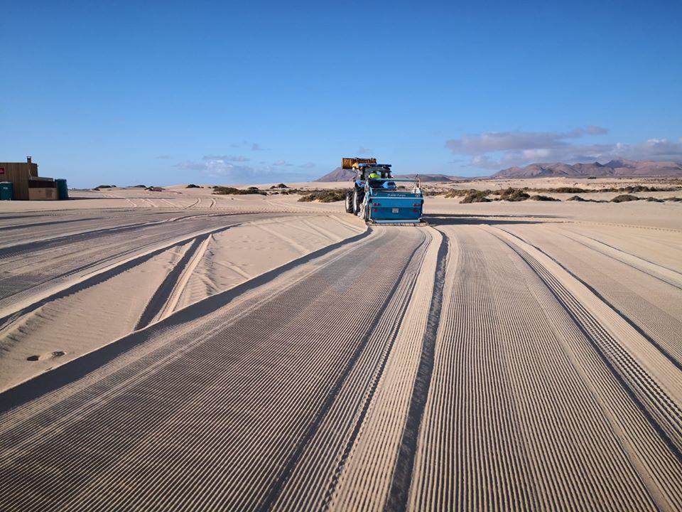 Las playas son ecosistemas y no montones de arena donde tumbarse al sol