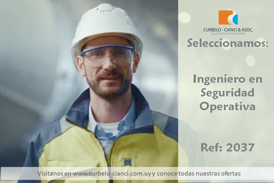 Ingeniero en Seguridad Operativa
