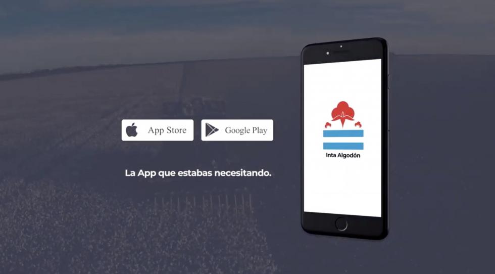 INTA Algodón, una aplicación móvil pensada para el productor