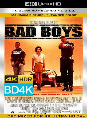 Bad boys 1995 [BD4K] [Latino]