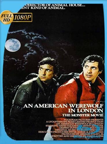 An american werewolf in London 1981 [1080p BRrip] [Latino-Inglés]