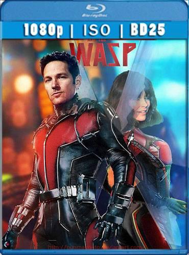 Ant-Man and the Wasp 2018 [BD25] [Latino]
