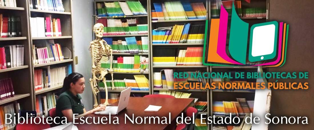 Bibliotecas de Escuelas Normales