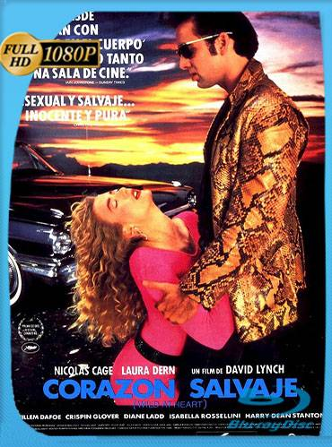 Wild at heart 1990 [1080p BRrip] [Latino-Inglés]