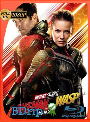 Ant-Man and the Wasp 2018 [1080p BDrip] [Latino-Inglés]