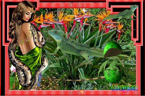 Imágenes 600 x 400 - Página 25 BhnqtaT