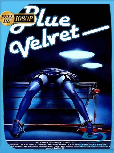 Blue velvet 1986 [1080p BRrip] [Latino-Inglés]