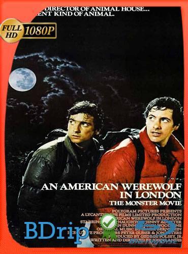 An american werewolf in London 1981 [1080p BDrip] [Latino-Inglés]