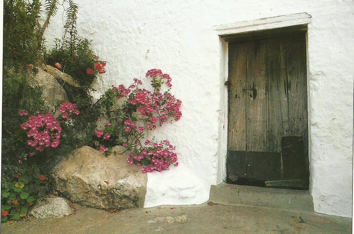 Intercambio postalero - POSTCROSSING VERANO 2017 El Desván - Página 3 MPCN1YG