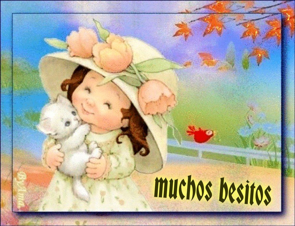 Muy Mimosa Qzb480J